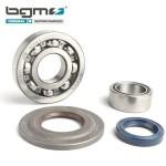 BGM crankshaft bearing & oil seal set: P range (metal type)